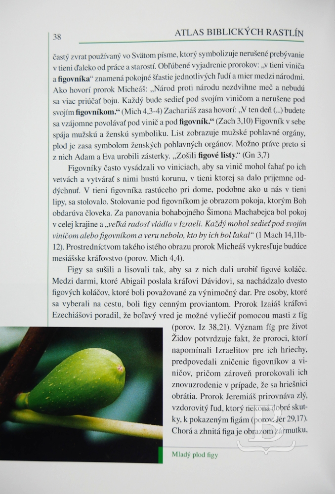 Atlas biblických rastlín