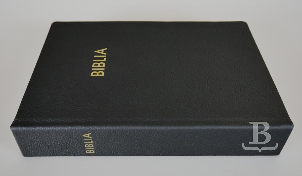Biblia slovenská, ekumenický preklad, rodinný formát, koža