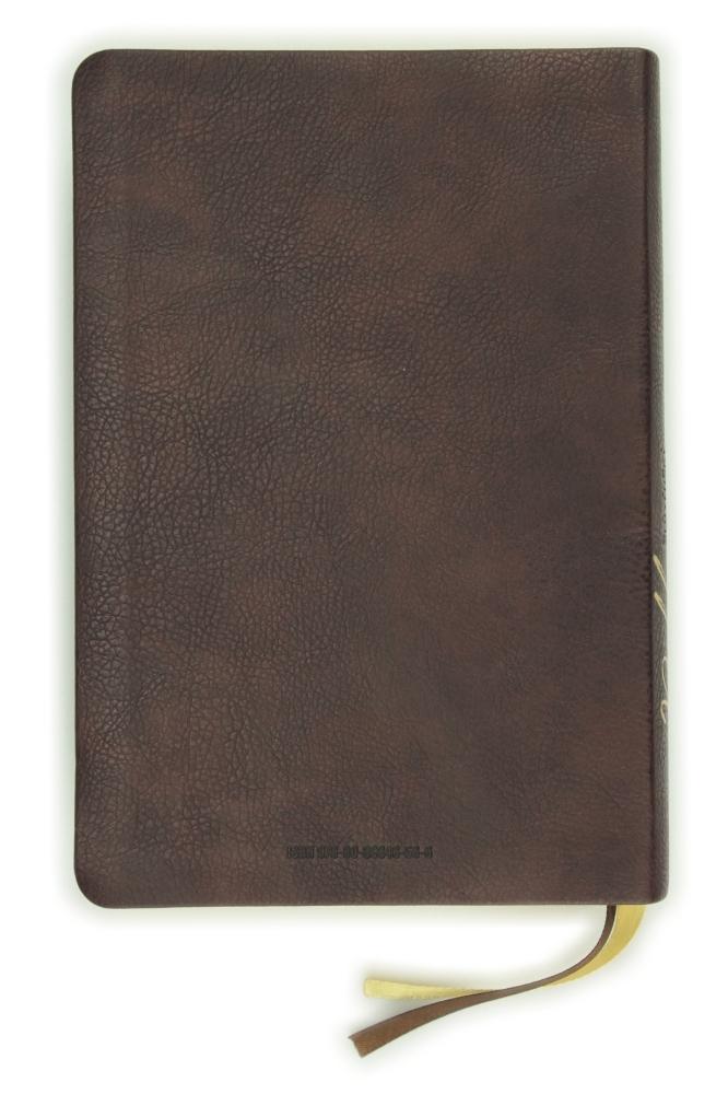 Biblia, ekumenický preklad, edícia SLOVO, 2020, tmavohnedá, s indexmi